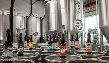 Die Bier-Aufklärung
